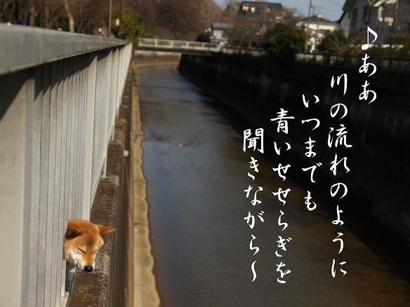 f0109601_003958.jpg