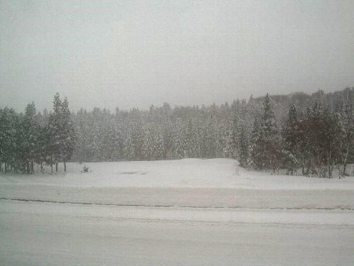 雪まつり @十日町。_b0157216_11455780.jpg