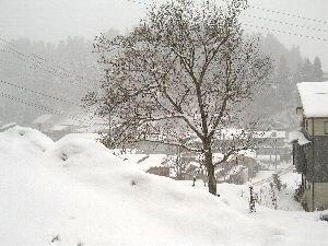 雪まつり @十日町。_b0157216_11504783.jpg