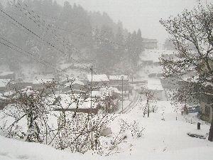 雪まつり @十日町。_b0157216_1151207.jpg