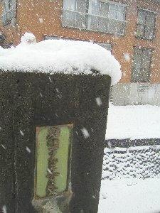 雪まつり @十日町。_b0157216_11533095.jpg
