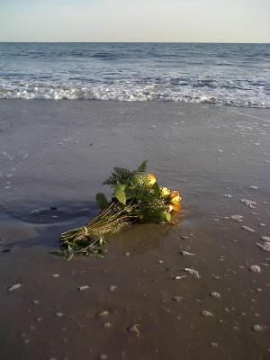 浜辺の花束_f0088456_6561240.jpg