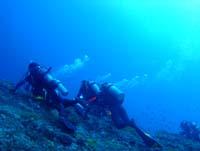ディーズパルス沖縄 3泊4日 与那国島ツアー_d0113459_1871654.jpg