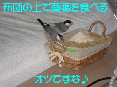 b0158061_073427.jpg