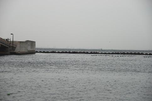 春の海へ_c0167264_194329.jpg