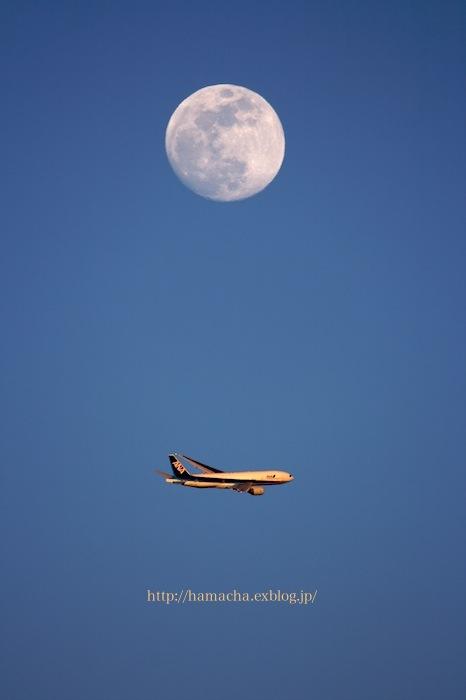 Flying under the Moon_c0158775_2111331.jpg
