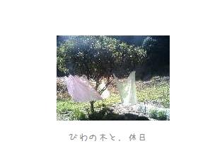 b0120001_21275788.jpg
