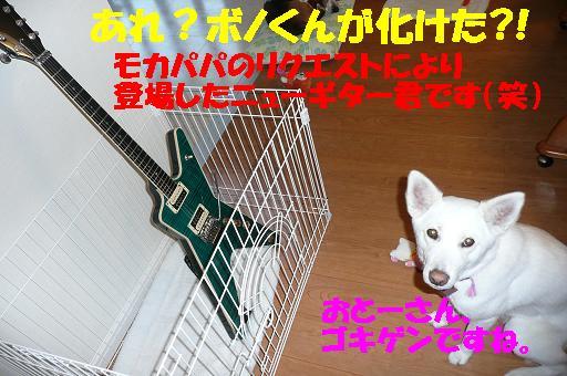 f0121712_13293230.jpg