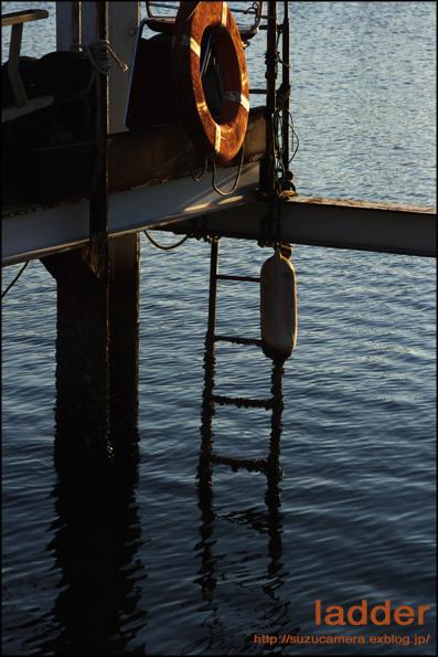 海へ続くはしご_f0100215_0421289.jpg