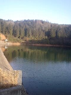 真冬の野池めぐり in HIROSIMA!_e0100021_3493561.jpg