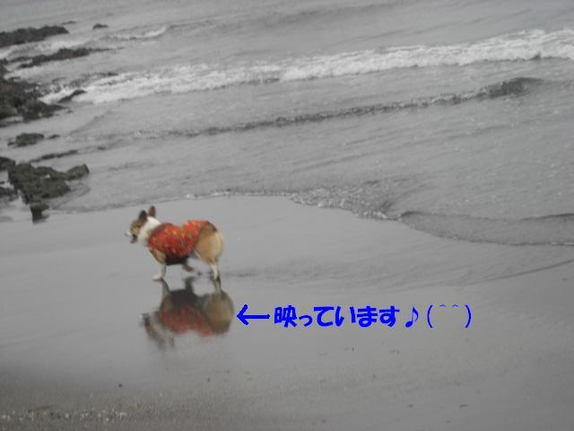 f0182121_10193472.jpg