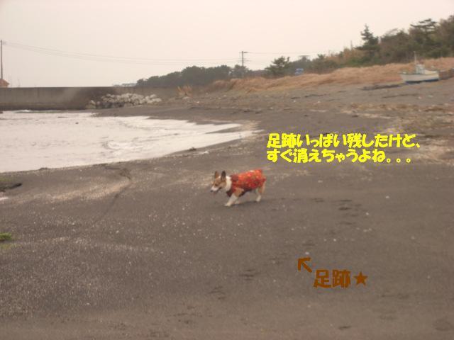 f0182121_10204555.jpg