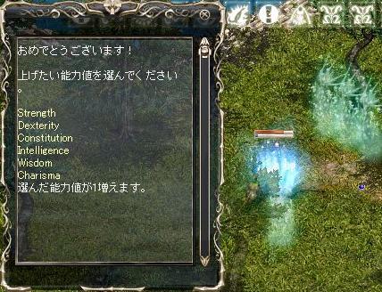 b0090266_200277.jpg