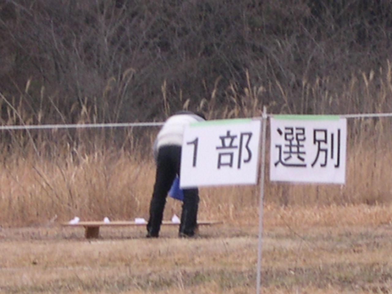 ワンちゃんの競技会_f0081071_19221539.jpg