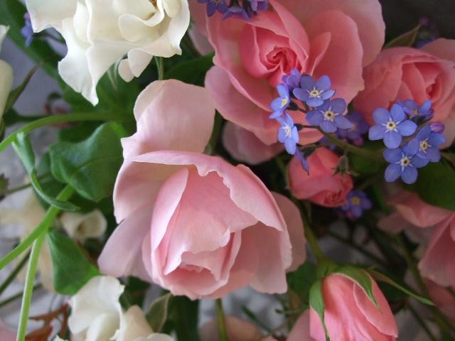 オークリーフ(お誕生日の花束)_f0049672_17311698.jpg