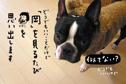 f0170072_1135612.jpg