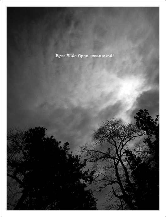 太陽と雲の地図_c0170584_2131479.jpg