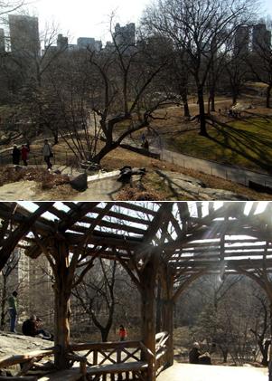 岩山から眺める早春のセントラルパーク_b0007805_11102926.jpg