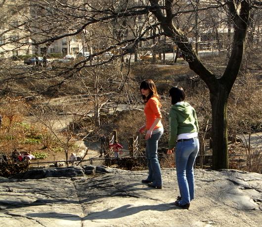 岩山から眺める早春のセントラルパーク_b0007805_11133531.jpg