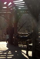 岩山から眺める早春のセントラルパーク_b0007805_115503.jpg