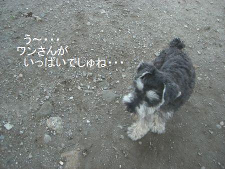 f0197317_14364313.jpg