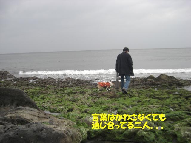 f0182121_761978.jpg