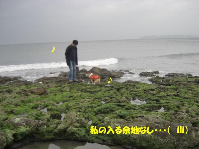 f0182121_76353.jpg