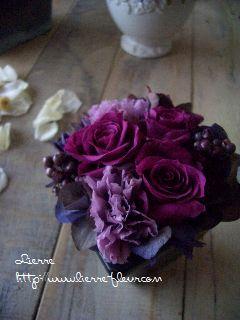 紫_e0127625_912411.jpg