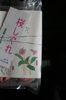 桜しぐれ_a0099628_128842.jpg