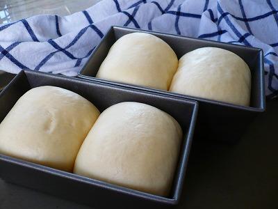 ヨーグルトパンとバジルのパン_e0160528_0512523.jpg