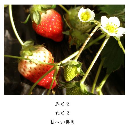 f0192530_2203656.jpg
