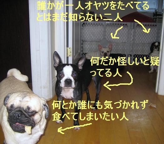 c0132537_12204049.jpg