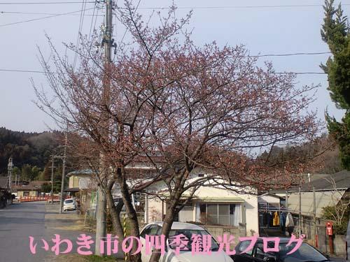 f0105342_1749024.jpg