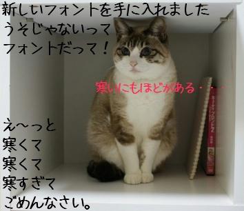 f0190851_0573993.jpg