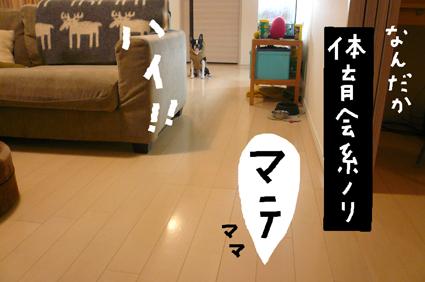 f0170072_2312711.jpg