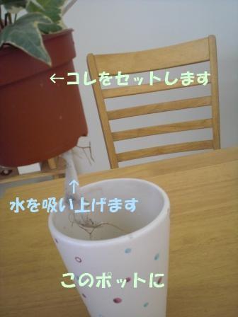 c0196992_7534459.jpg