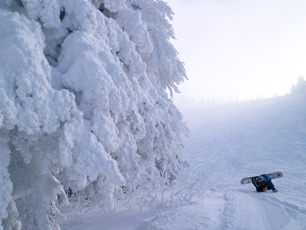 樹氷原で_c0065410_18321538.jpg