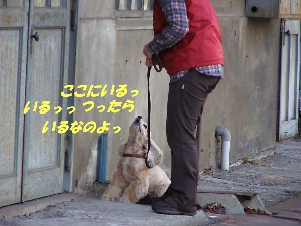 b0067012_2359322.jpg