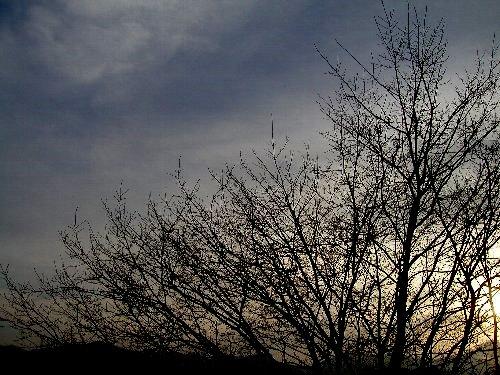 Photo album 【きのうの風景】_b0157216_23285533.jpg