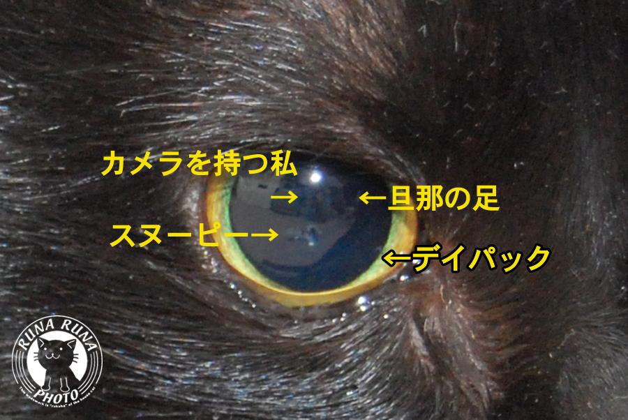 b0118920_213561.jpg