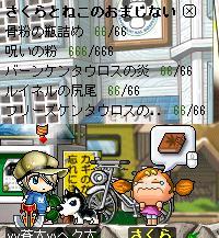 f0053927_1781516.jpg