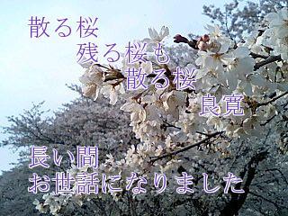 a0014141_155042.jpg