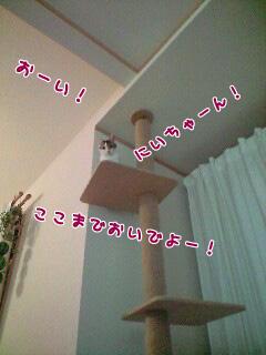 f0079967_22504736.jpg