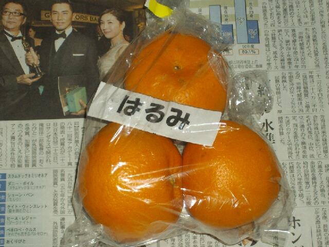 はるみ」という柑橘を食べてみた。 _f0018078_1939429.jpg