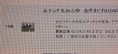 b0021297_1650395.jpg
