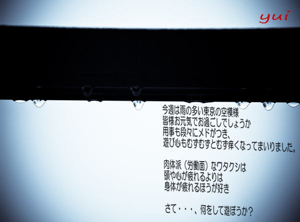 a0012499_11304227.jpg