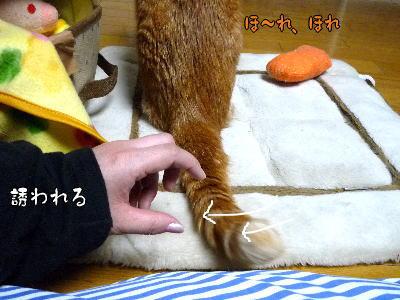 f0187700_13271377.jpg