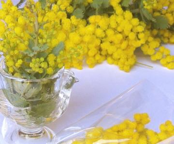イタリアのひな祭り 女性に感謝を_c0130206_2202917.jpg