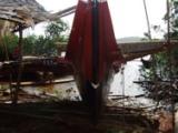 伝統カヌーもヤップデイの準備_a0043520_214855.jpg