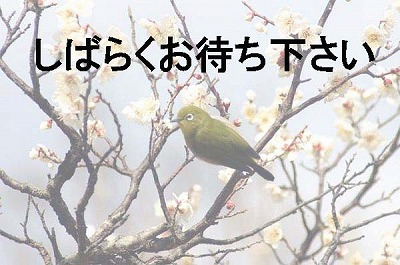 c0128722_6345668.jpg